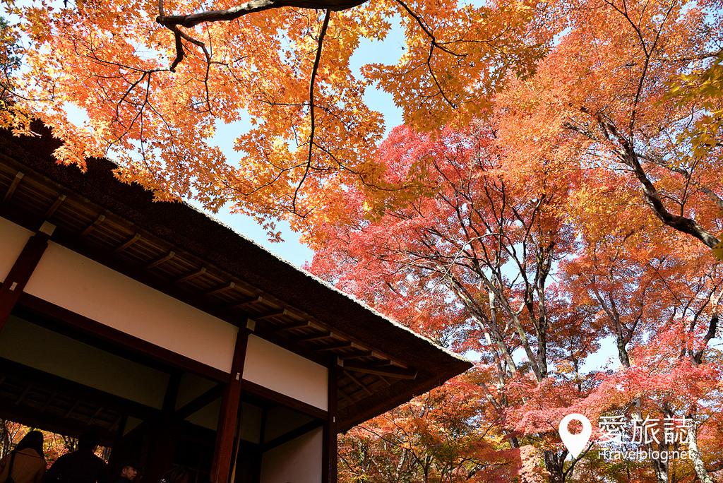 常寂光寺(Jo jakko-Ji Temple) 03