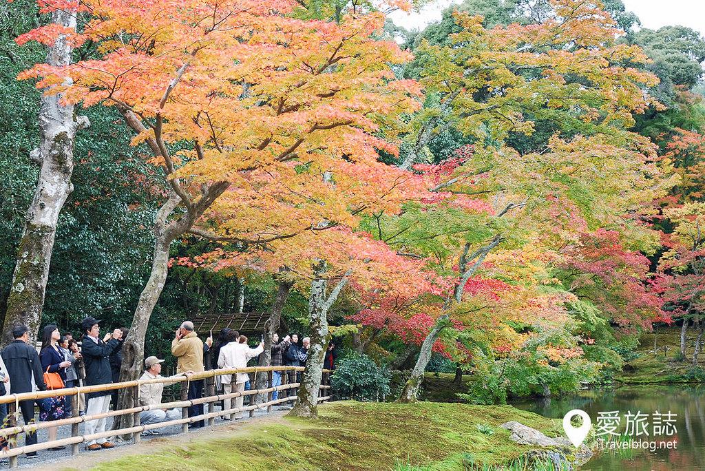 金閣寺(Kinkaku-ji temple) 03