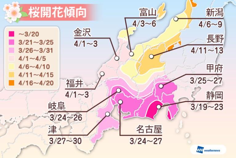 2016應花花況