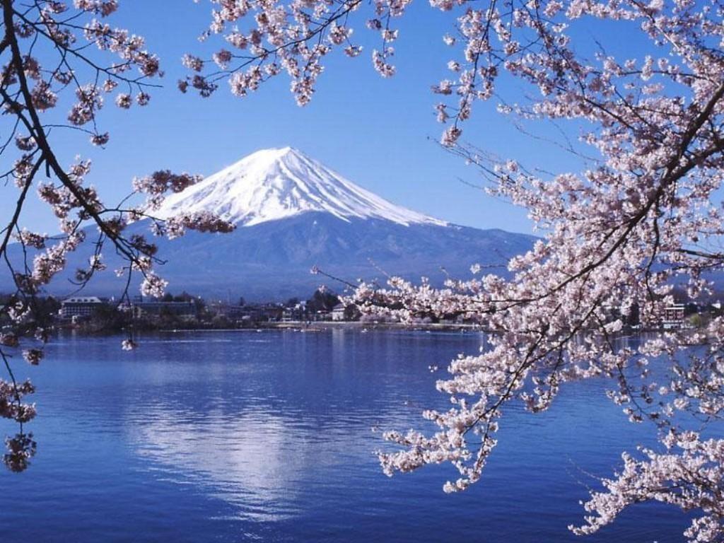 50年来去日本最好的时候到了!附最强日本自由行攻略!